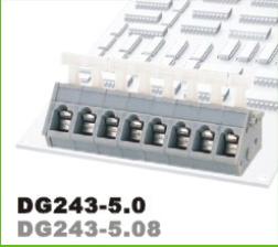DG243-5.0