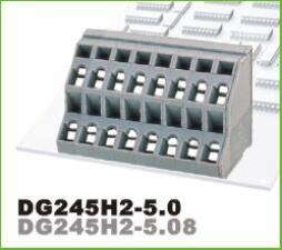 DG245H2-5.0/5.08